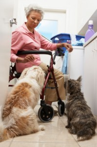 lady with pets
